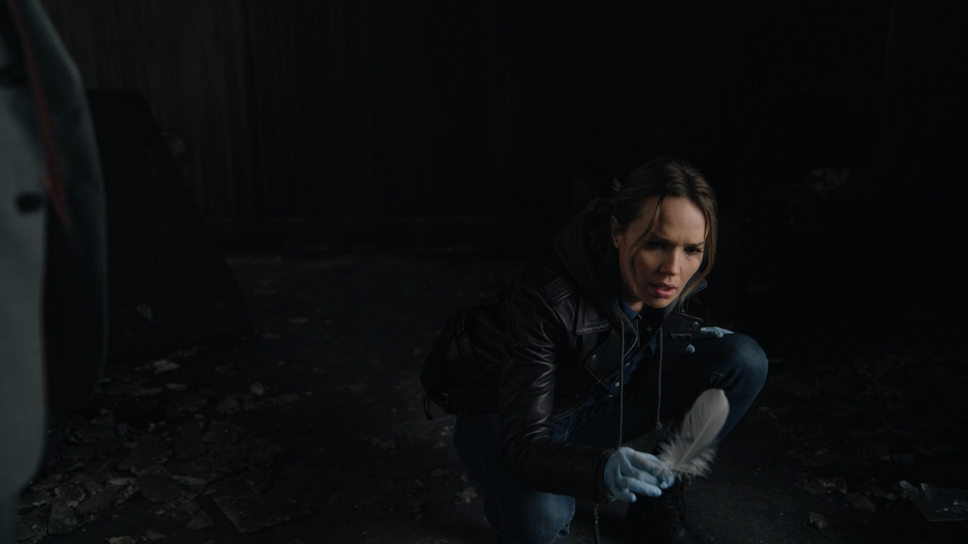 Arielle Kebbel- Lincoln Rhyme: Hunt for the Bone Collector S01E01-E02 (Series Premiere, Pilot)